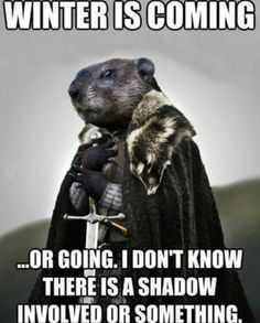 5a9aaa4530722f994c2b98ad62e5d7c0 groundhog day winter is coming groundhog memes groundhog memes next image groundhog day,Funny Groundhog Meme