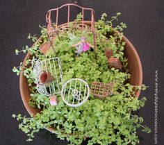 Fairy Garden by Every Day is an Occasion  #fairy #garden #kids #craft