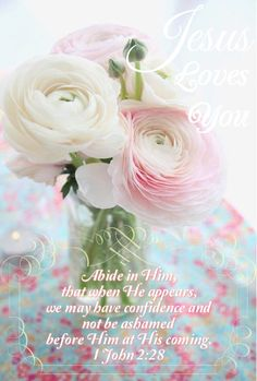 1 John 2:28 (ESV) Children of God 28 And now, little children, abide in him, so that when he appears we may have confidence and not shrink from him in shame at his coming.