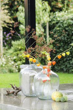 Sfeer deco Tags: glas - bloemen - decoration - buiten - tuin - opmaak - planten - decoratie - potten - vaas - flowers - home - diy - outside - gardening - vase - latest trends - trending - glassware - florists - flower - plants - planted - floral - glass - inspiration - ideas indoor - outdoor - decor