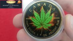 Collectors Close Up. 2017 Indica Marijuana Burning Maple. CSS 100 Days o...