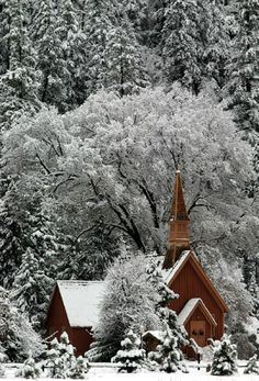 ♥♥♥ church in the snowy forest