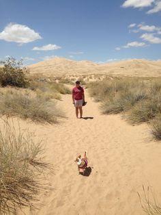 Hiking at Kelso Dunes.