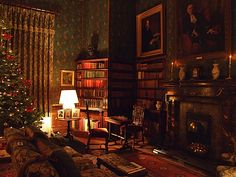 Dunster Castle, Somerset, England library