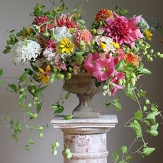 8 Summer Arrangement Ideas Floral designers from around the world share their ideas for creating inspiring and beautiful seasonal flower arrangements for summer. The post 8 Summer Arrangement Ideas appeared first on Ideas Flowers. Summer Flower Arrangements, Beautiful Flower Arrangements, Flower Vases, Floral Arrangements, Summer Flower Centerpieces, Blue Hydrangea Centerpieces, Flower Arrangement Designs, Flower Tree, Floral Flowers
