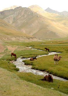Stream passing through the valley, Tash Rabat, Kyrgyzstan