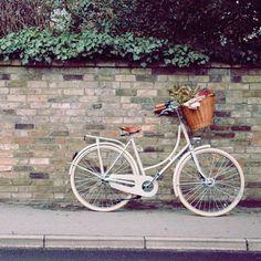 vélos rétro,beg bicycles,vélos vintage,vélos                              …