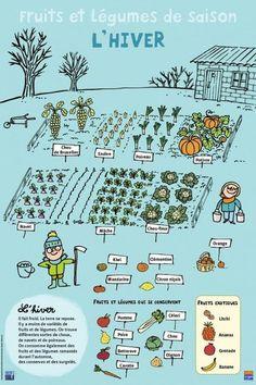 Fruits et légumes - Hiver