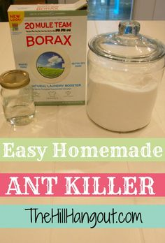 This homemade ant killer from TheHillHangout.com is all natural and only three ingredients!