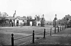 Old Pictures, Old Photos, Vintage Photos, Castles In Ireland, Ireland Homes, Irish Independence, Irish Drinks, Gone Days, Dublin Street