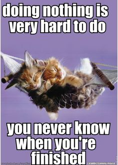 Hahaha well I believe you cuties!! It's lots of hard work and looking adorable at the same time too!! <3 :3