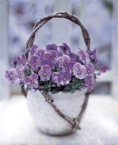 Le Bouquet du Dimanche #6                                                                                                                                                     Plus