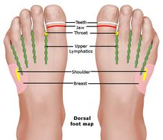 Reflexology Foot Chart – Reflexology chart or map is a diagram used to show body…, Fußreflexzonenmassage Acupressure Therapy, Acupressure Massage, Cupping Therapy, Massage Therapy, Lymph Massage, Reflexology Points, Acupressure Points, Foot Reflexology Chart, Tips