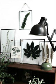 herbier dans des cadres déco Interior Inspiration, Room Inspiration, Diy Wanddekorationen, Diy Crafts, Sweet Home, Diy Casa, Ideas Hogar, Ideias Diy, Interior Decorating