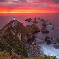Follow the link in our profile to register for #worldphotoday. This week We're exploring #newzealand! --   via @goldiehawn_ -- Breathtaking moments. #NZMustDo - Clutha South Island.  #Travel #NewZealand #NZ #Sunrise