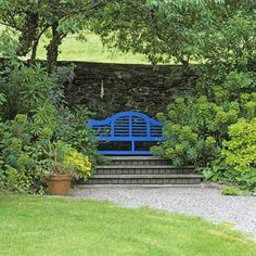 Garden with bench on raised steps    This blue-painted Lutyens bench on a raised step between Euphorbia characias subsp. wulfenii has lovely views to the hills opposite.    This garden is in Llangollen, North Wales and open through the National Garden Scheme