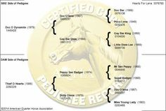 One Badgers family tree