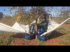 A quick demonstration of the Multione model with a tree shaker attachment on a macadamia tree in South Africa. Kinetic And Potential Energy, Kinetic Energy, Toyota Prius, Harvester, Planes, Africa, Activities, Amazing, Youtube