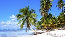 Saona Island Beach (Dominican Republic)