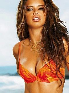 Gorgeous golden brown hair. Victorias Secret Model Adrianna Lima