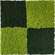 Licheni conservati/Licheni stabilizati. Gradina verticala plante stabilizate Urban, Interior Design, Plant, Nest Design, Home Interior Design, Interior Designing, Home Decor, Home Interiors, Interiors