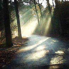 Sunrise in Bilthoven, Netherlands