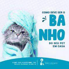 Social Media Banner, Social Media Design, Pets Online, Banners, Marketing, Pet Shop, Banner Design, Caricature, Web Design