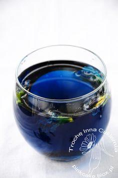 klitoria ternateńska (Clitoria ternatea) Blue thai flower, blue pea flower tea, butterfly flower tea