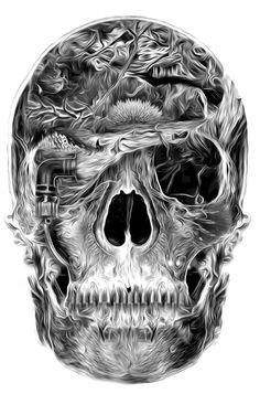 Designersgotoheaven.com - Fantasmagorik Skull.