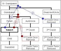 Encyclopedia of Genealogy - Relationships