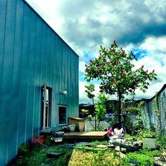 kensyouさんの、庭,玄関/入り口,のお部屋写真