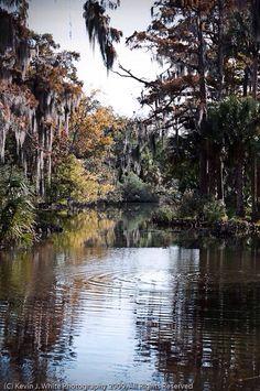 City Park @New Orleans, Louisiana