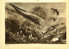 Devonian Extinct Prehistoric Fishes Vintage by CarambasVintage, $16.00