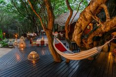 The gorgeous deck at Kosi Forest Lodge in the Kosi Bay Nature Reserve, KwaZulu-Natal, South Africa Best Honeymoon Destinations, Honeymoon Planning, Holiday Destinations, Travel Destinations, Safari Holidays, Honeymoon Suite, Kwazulu Natal, Nature Reserve, Africa Travel