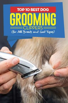 55 best best dog hair clippers images on pinterest in 2018 free the 10 best dog grooming clippers solutioingenieria Gallery