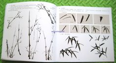 Chinese Line Painting Book Ink Bamboo View for Learner to Paint | eBay