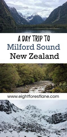 A Winter Day Trip To Milford Sound, New Zealand - Eight Forest Lane