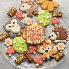 Girly Woodland Set #madriscookiekitchen #decoratedcookies #woodlandanimals