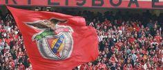 Benfica hoje , amanha , e ate morrer <3