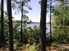 Property in Columbia, Congaree River, Sumter, Blythewood, Lakewood, Eastover, South Carolina: Columbia, SC Lakefront Real Estate