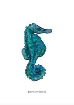 A5, Seahorse