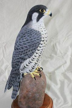 falcon tattoos | Pin Peregrine Falcon Tattoo Tattoos on Pinterest