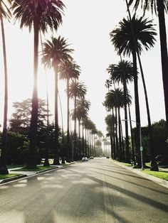 Freeways street hierarchy palm trees line beverly hills for Moving from los angeles to new york