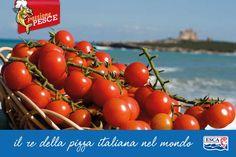 Ricordiamoci, inoltre, il ruolo d'onore che ricopre il pomodoro nella cucina italiana, conferendo l'aspetto e il sapore tipici di quello che è uno dei piatti della tradizione italiana più conosciuto e amato nel mondo: la pizza!