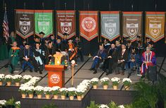 graduation ceremony decorations ideas - Google Search