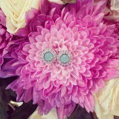 In full bloom... www.lolurhoda.com