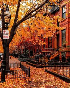 Wonderful Picture, Wonderful Places, Beautiful Places, Beautiful Streets, Days Until Halloween, Happy Halloween, Autumn Scenes, Autumn Cozy, Autumn Fall