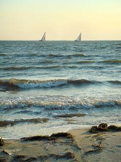 Bellport Bay by Howie Guja, photographer