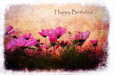 Bursdagsblomster - Birthday Flowers