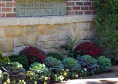 Unique by Design l Fall Plantings